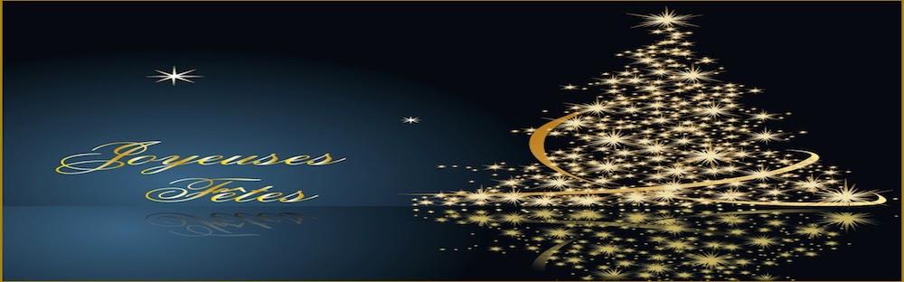 Carte-de-Noel-Joyeuses-Fetes-800x800.jpeg